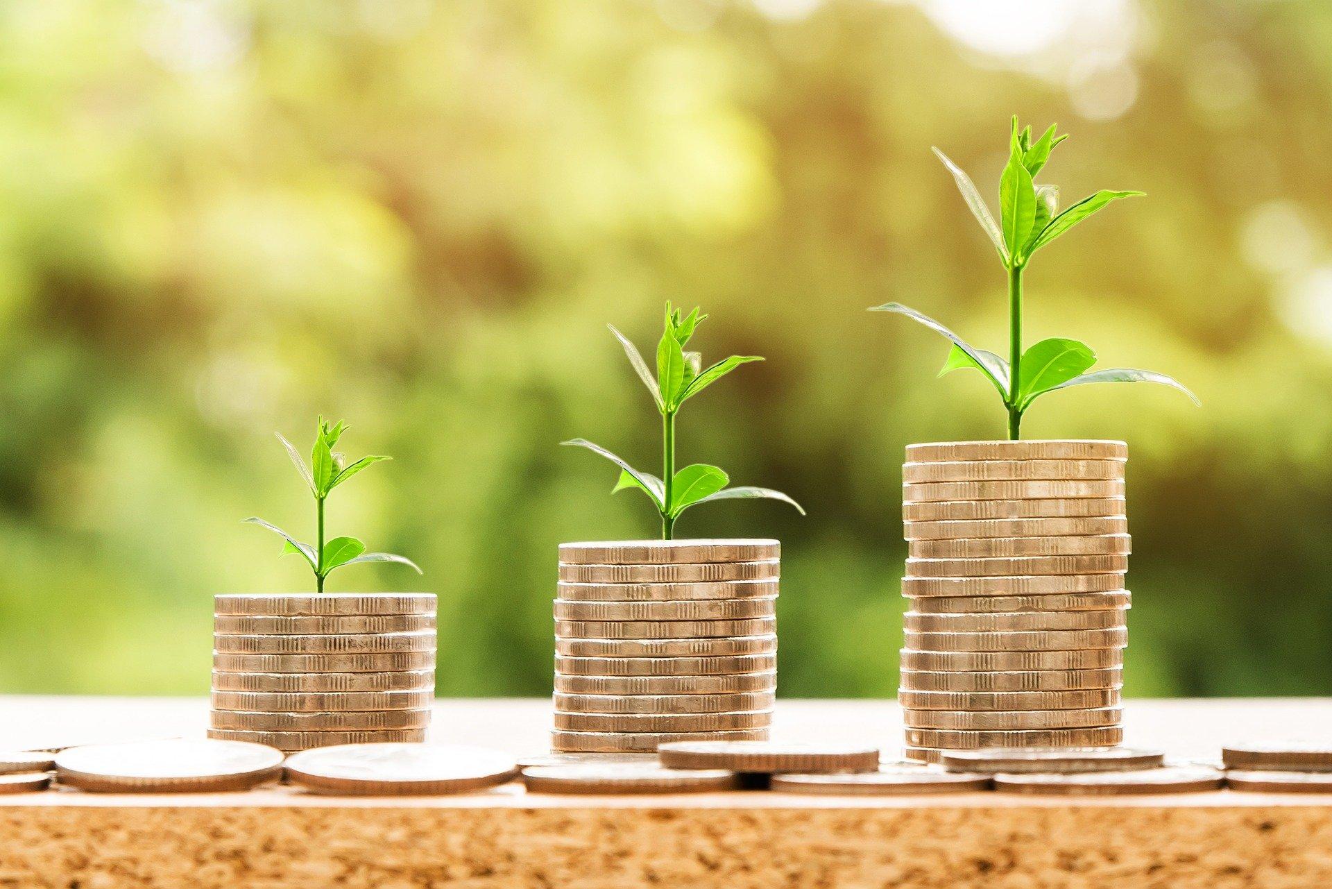 GRÜNE Fraktion stimmt Haushalt 2021 zu
