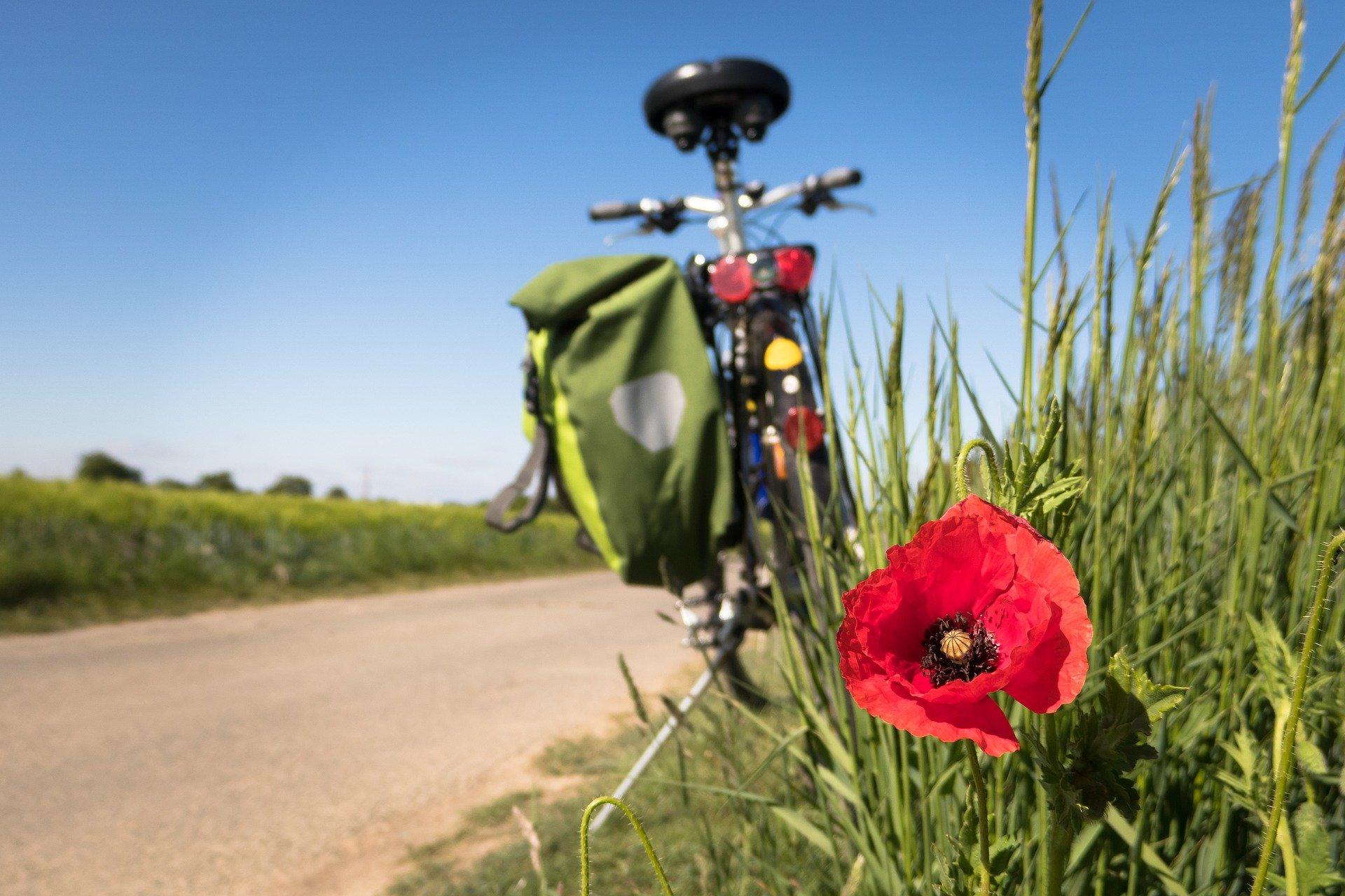 SAVE THE DATE: Wald, Wiese und Wein – GRÜNE Promi-Radtour im Main-Taunus-Kreis