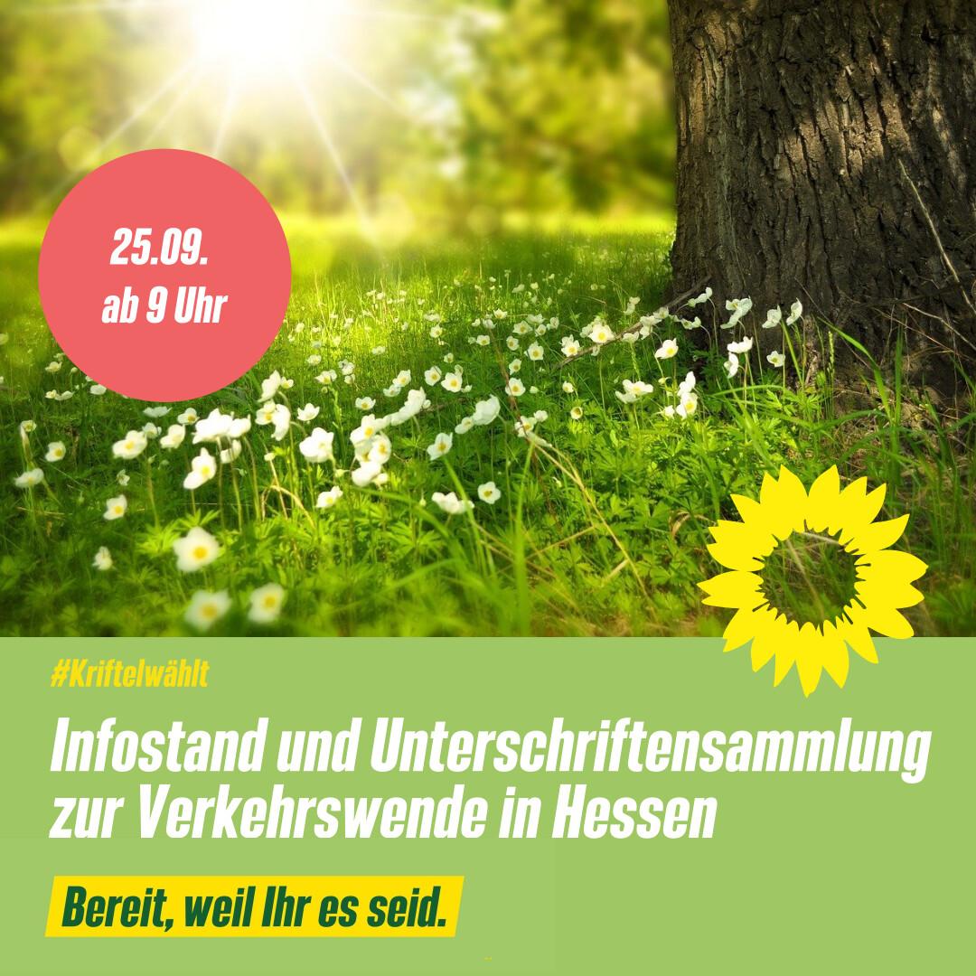 Infostand und Unterschriftensammlung zur Verkehrswende in Hessen